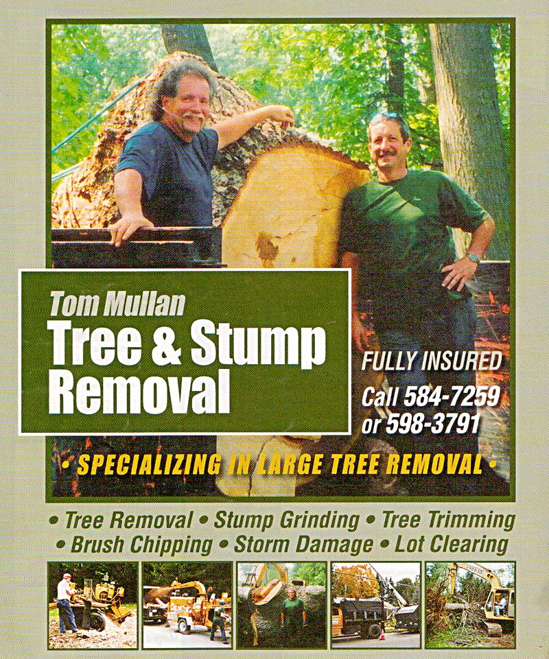 Call Tom Mullan Tree Service today